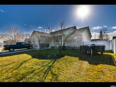 Eagle Mountain Single Family Home For Sale: 2156 E Lodge Pole N
