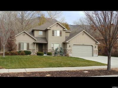 Springville Single Family Home For Sale: 758 W Devon Glen Dr N