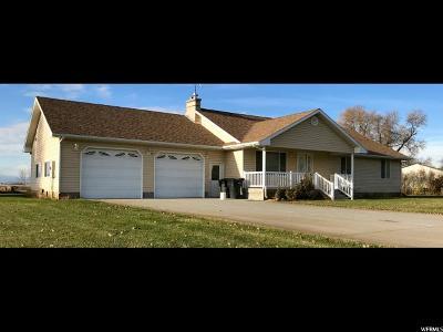 Franklin Single Family Home For Sale: 221 E Maple Creek Rd
