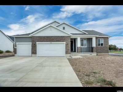 American Fork Single Family Home For Sale: 806 N 540 E