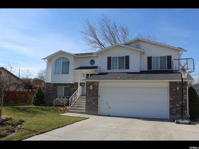 Tremonton Single Family Home For Sale: 1060 S 600 W