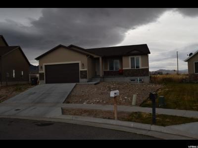 Tooele UT Single Family Home For Sale: $248,900