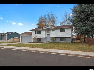 Orem Single Family Home For Sale: 1693 N 1030 W