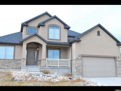 Saratoga Springs Single Family Home For Sale: 401 W Remington Ave