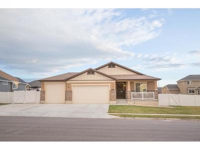 Lehi Single Family Home For Sale: 693 W Parkview Dr