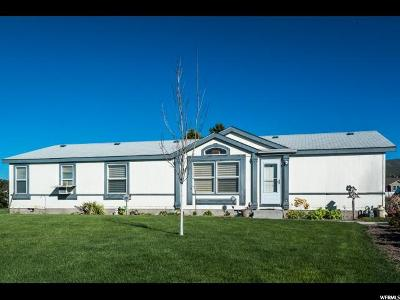 Tremonton Single Family Home For Sale: 810 N 2300 W
