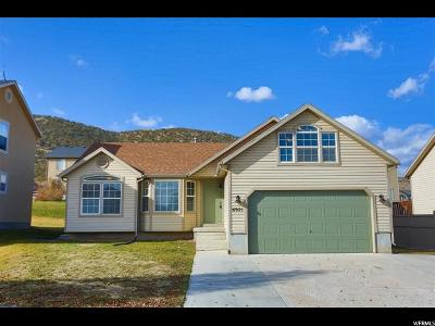 Eagle Mountain Single Family Home For Sale: 6921 N Chippewa Dr