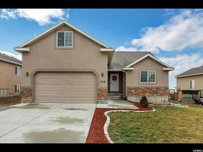 Tooele Single Family Home For Sale: 829 N 730 W