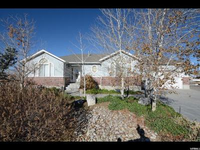 Stansbury Park Single Family Home For Sale: 160 N Lakeview W
