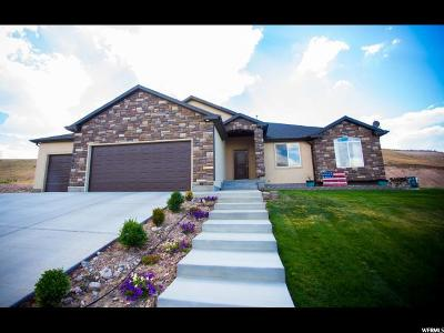 Santaquin Single Family Home For Sale: 652 S Summit Trl