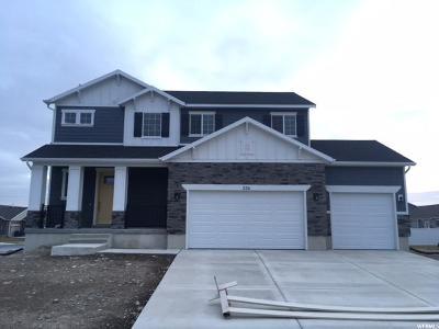 American Fork Single Family Home For Sale: 536 E 900 N #33