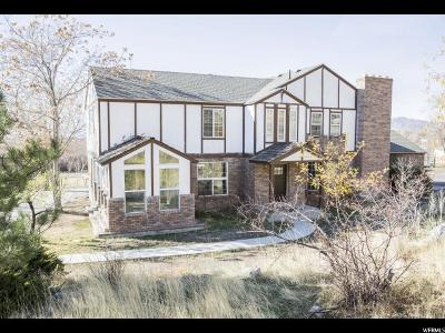 Cedar Hills Single Family Home For Sale: 9249 N Canyon Rd. E