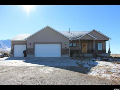 Erda Single Family Home For Sale: 1462 E Spring Meadow Dr N