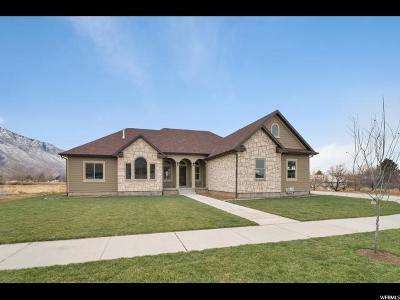 Mapleton Single Family Home For Sale: 175 W 1000 N