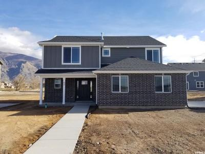 Springville Single Family Home For Sale: 90 N 1325 W #LOT 17