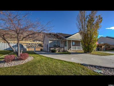 Santaquin Single Family Home For Sale: 396 N Peach St