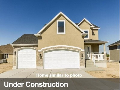 Willard Single Family Home For Sale: 734 S 225 E