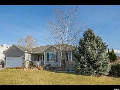 American Fork Single Family Home For Sale: 1212 N 450 W