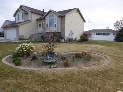 Syracuse Single Family Home Under Contract: 3895 W 1210 S
