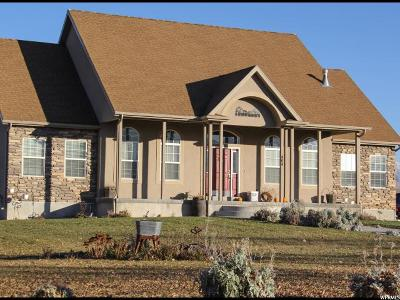 Grantsville Single Family Home For Sale: 404 Wrathall Cir W