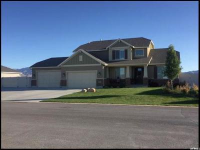 Grantsville Single Family Home For Sale: 608 E Coach Ln