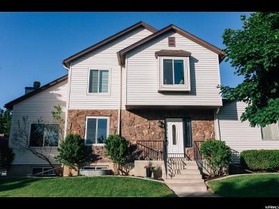 Logan Single Family Home For Sale: 80 S 1300 E