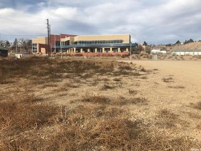 Carbon County Commercial Lots & Land For Sale: 100 N