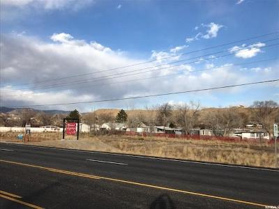 Carbon County Commercial Lots & Land For Sale: 545 W Hwy 55