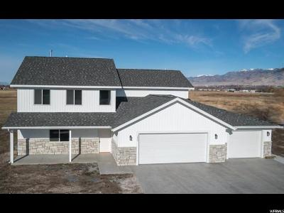 Nibley Single Family Home For Sale: 1029 W 2400 S