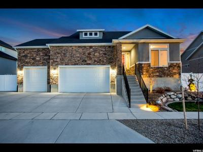 Stansbury Park Single Family Home For Sale: 329 W Delgada Ln N