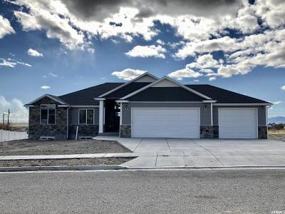 Tremonton Single Family Home For Sale: 2789 W Mountain Rd