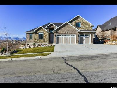 Bluffdale Single Family Home For Sale: 14168 S Stone Fly Dr