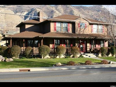 Provo Single Family Home For Sale: 4202 N Canyon Rd E