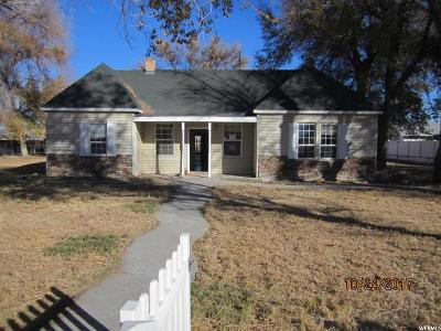 Delta Single Family Home For Sale: 4385 S 4000 W