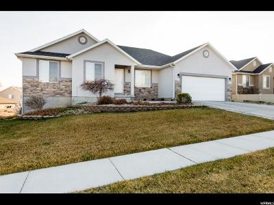 Saratoga Springs Single Family Home For Sale: 653 W Sunflower Way
