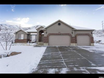 Perry Single Family Home For Sale: 2537 S Elm Grove Dr