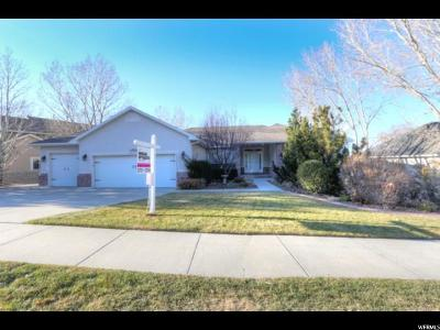 Draper Single Family Home For Sale: 13708 S Annie Lace Way