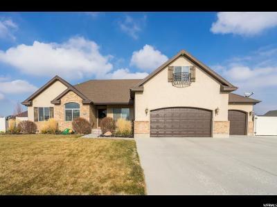 Spanish Fork Single Family Home For Sale: 1313 E 230 N