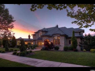 Provo Single Family Home For Sale: 392 W Stone Brooke Ln N