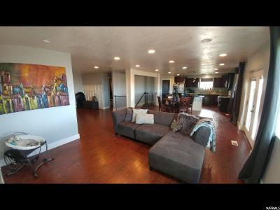 Spanish Fork Single Family Home For Sale: 1571 N Sr 51 E