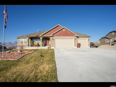 Eagle Mountain Single Family Home For Sale: 9583 N Horizon