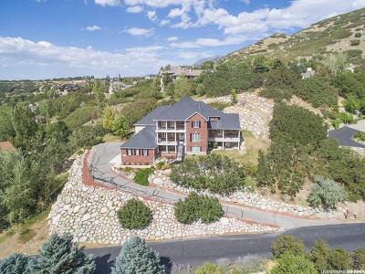 Sandy Single Family Home For Sale: 3171 E Canyon Oak Cir S