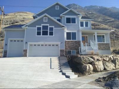 Provo Single Family Home For Sale: 1944 N 1550 E