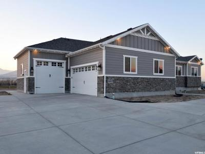 Lehi Single Family Home For Sale: 599 N 2670 W