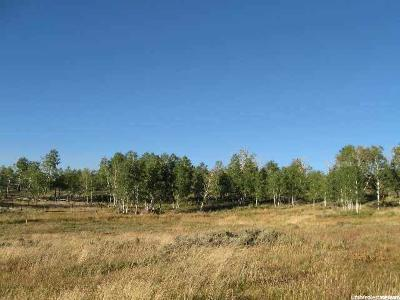 Carbon County Residential Lots & Land For Sale: W Aspen Cv