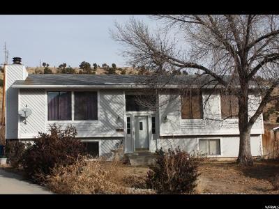 Helper Single Family Home For Sale: 809 Spring Canyon Cir.