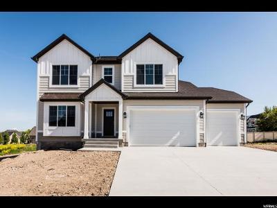 Smithfield Single Family Home For Sale: 887 E 190 S