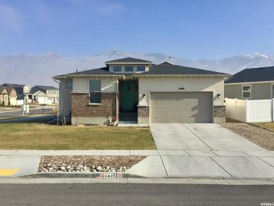 Stansbury Park Single Family Home For Sale: 6880 N Decker Dr