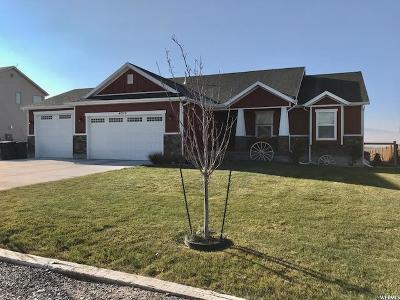 Erda Single Family Home For Sale: 4315 N Rose Springs Rd