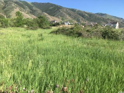 Providence Residential Lots & Land For Sale: 980 S 470 E